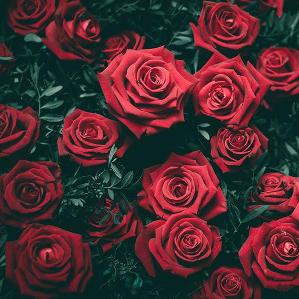 2018 - San Valentino - RLP 1